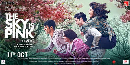 Watch The Sky Is Pink Online Full Movie Metareel Com