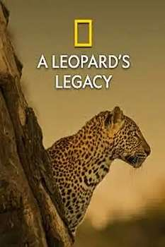 A Leopard's Legacy