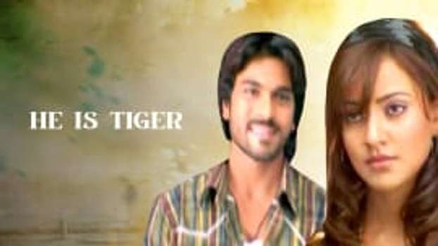 He Is Tiger