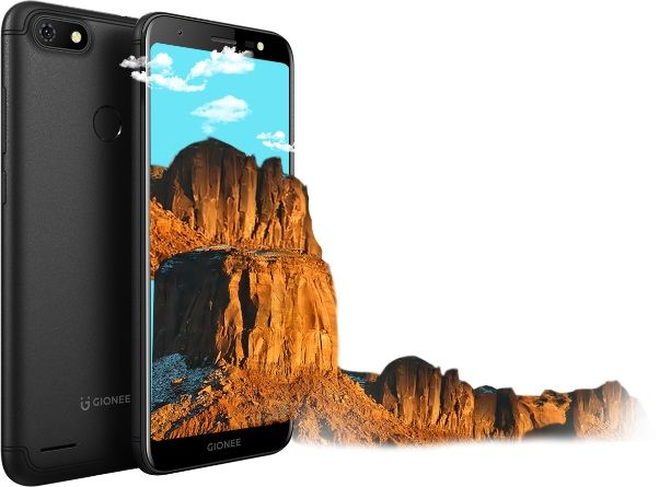 Gionee F205 Pro launched in India