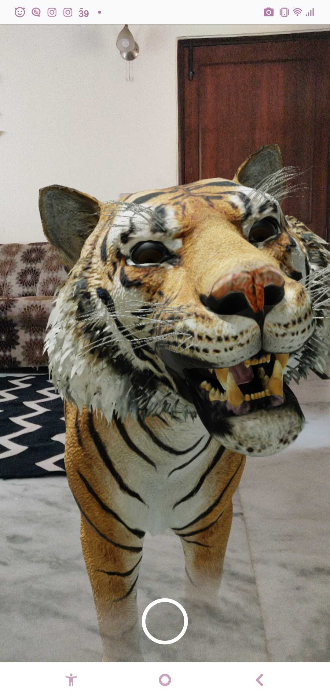 With Google 3D animals, we can estimate their actual size in relation to things around us