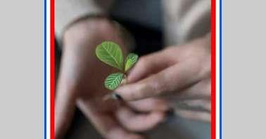Amazon World Nature Conservation Quiz